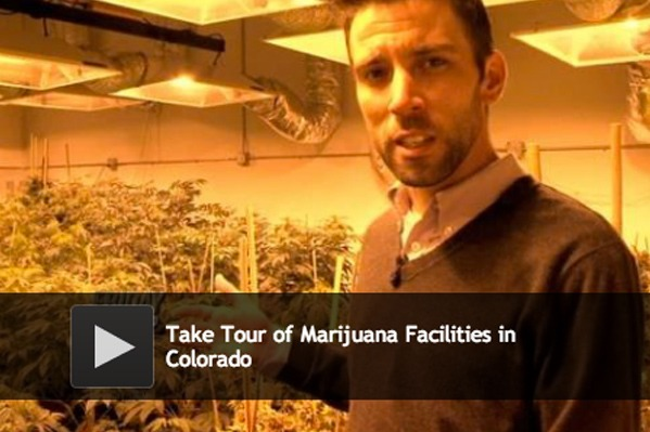 Huffington Post covers My 420 Tours