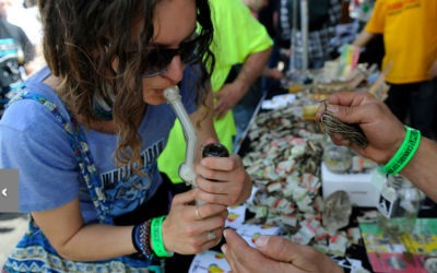 The Denver Post covers The Cannabis Cup
