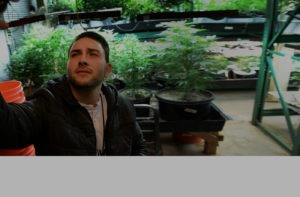Man looking at pot plants in large room
