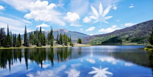 Private cannabis tours - customized to your interests