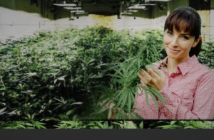 Women in large grow house 420 tours