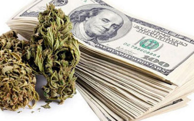 Denver Colorado Ranked Number One for Businesses, Careers, and Weed