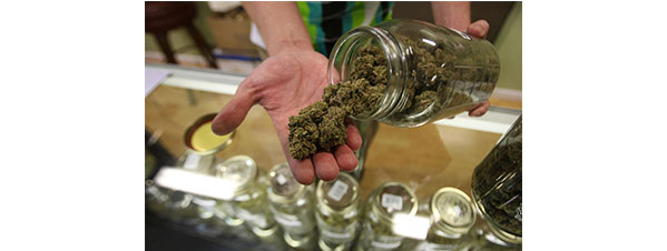 budtender at recreational marijuana dispensary selling Colorado weed
