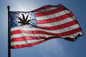 American flag with weed leaf
