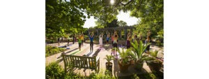 Things to do in Denver for Memorial Day, stoned yoga.