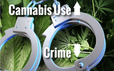 Crime Reduced in Colorado due to people smoking weed