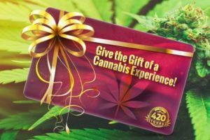 Denver pot tours gift certificate