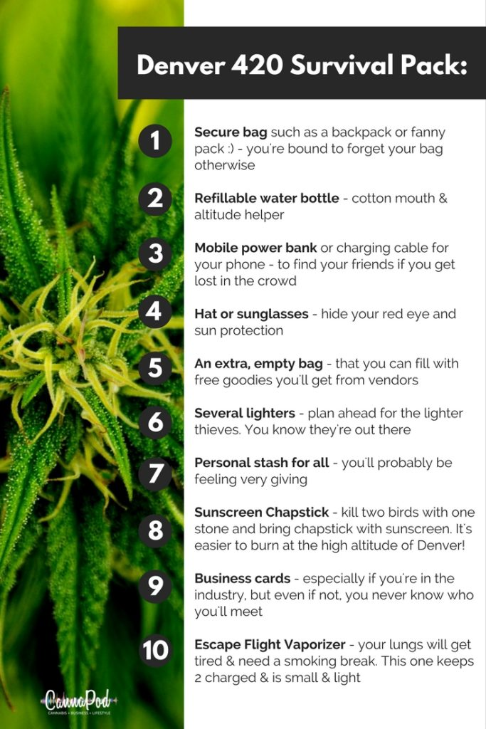 420 Survival Guide