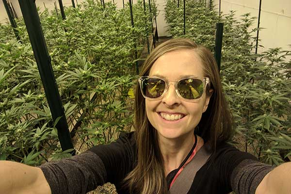 Colorado Weed Trip: Why to Book One