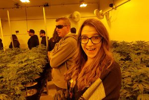 Denver brewery tour weed