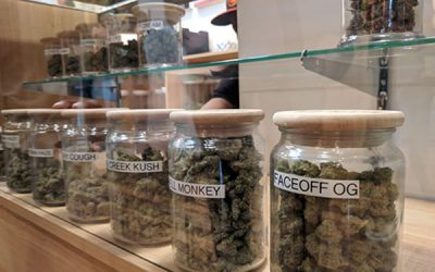 Denver Recreational Dispensaries: Our Favorite Things to Buy