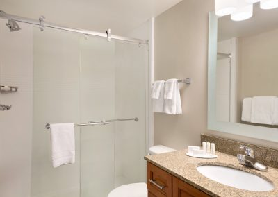 TownePlace Suites Denver Downtown - Guest Bathroom - Shower - 1270831