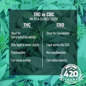 THC vs CBD chart graph table cheat sheet