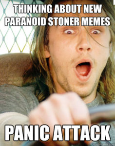 Stoner Stereotypes 5 paranoid
